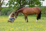 18-girl-kneels-with-horse-summer-meadow-buttercups