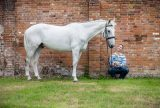 3-grey-eventer-owner-horse-photography-berkshire