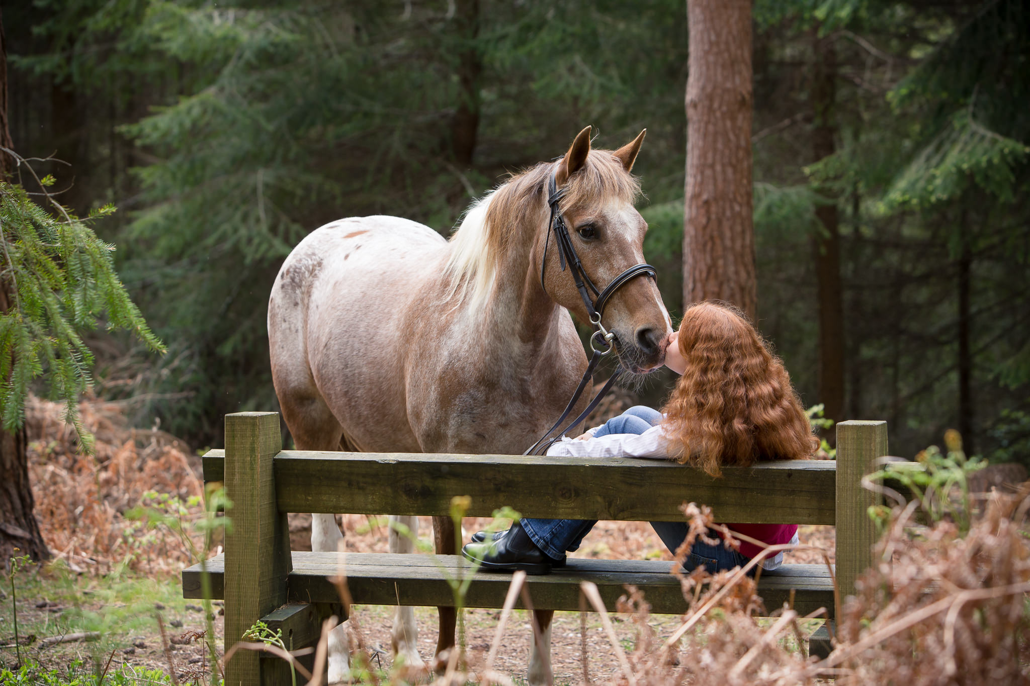 Horse-And-Rider-Portraits-In-The-New-Forest-Hampshire