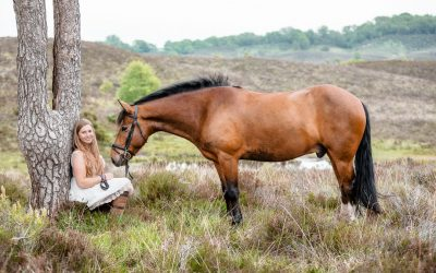 EQUINE PHOTOSHOOT – THE NEW FOREST