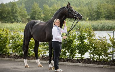 What is the best time of the year for equine photography?