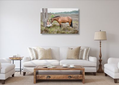new forect equine photoshoot canvas hangin on the wall in a lounge