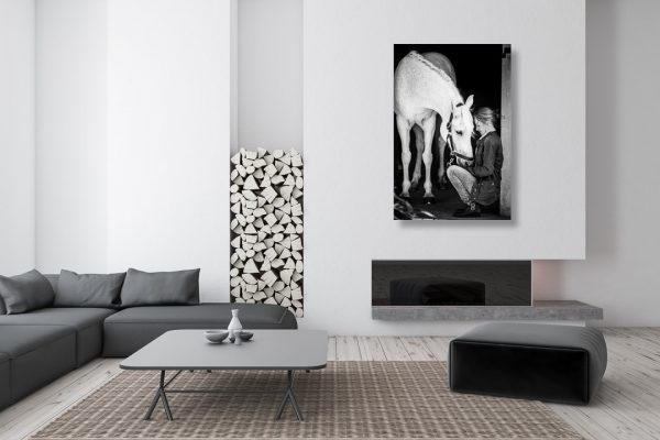 contemporary lounge with a black and white equine photography canvas hanging on the wall